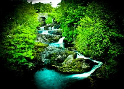 Mill River Gerard O'Kane