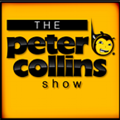 petercollinsicon.png