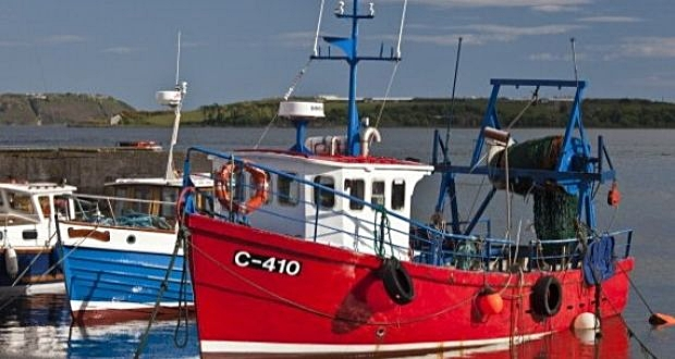 Fishing boats are seen in Cobh harbour in Co Cork. Fishermen's representatives have called for a review of EU fishing rules. Photograph: Getty
