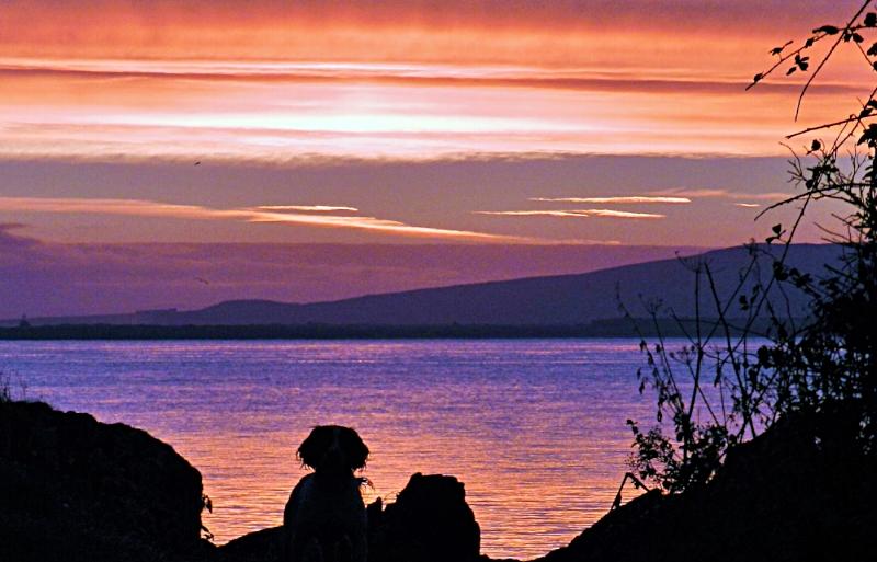 View from Glenburnie Beach in Carnagarve, Co Donegal - photo Enda Craig