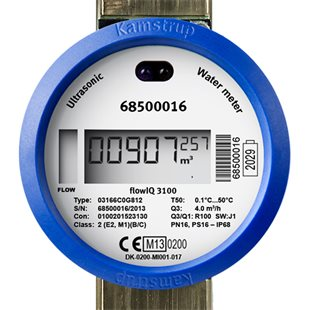 There is no debate on the costs, who pays and the health and security aspects of millions of Smart meters .