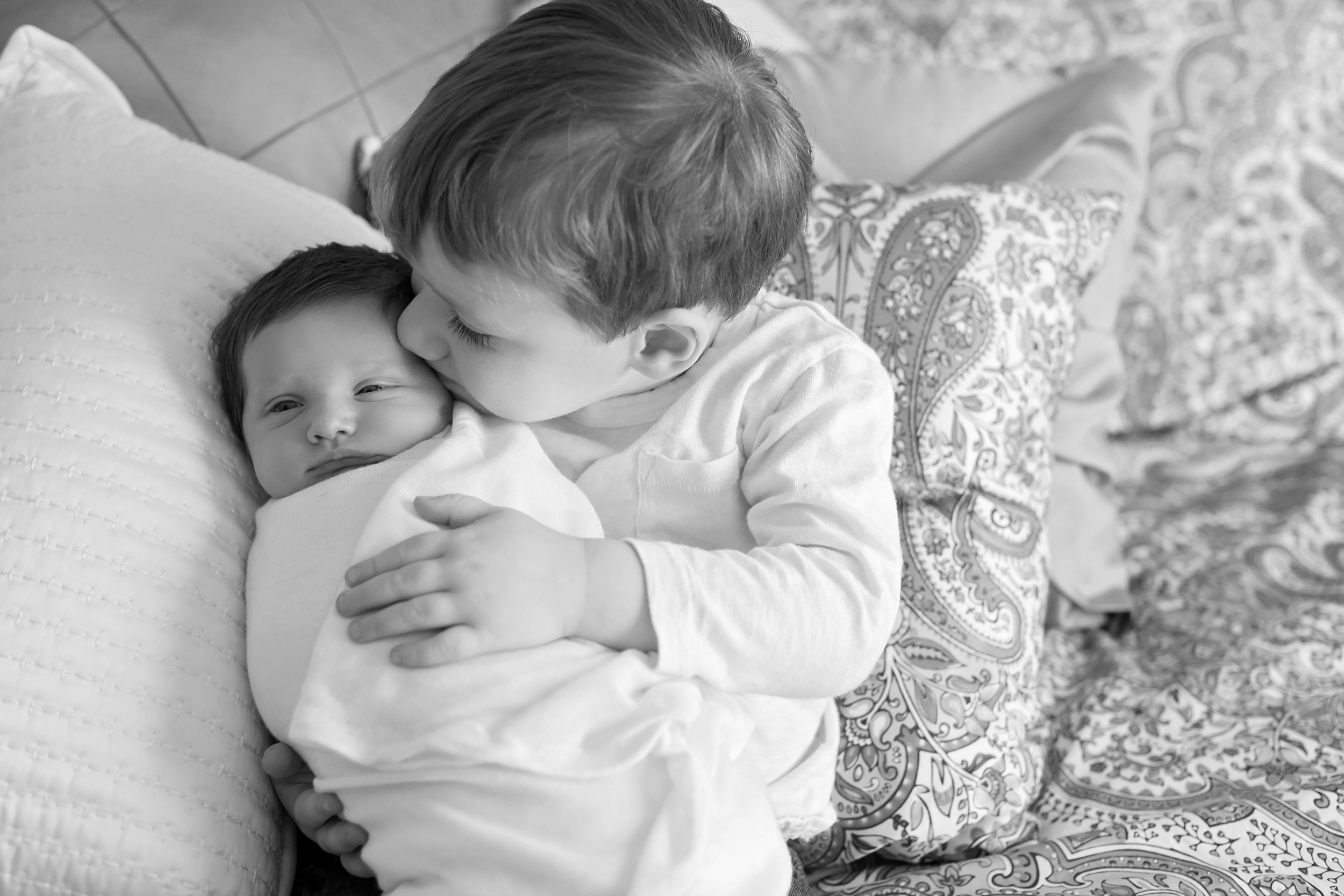 Boulder Newborn Lifestyle Photographer