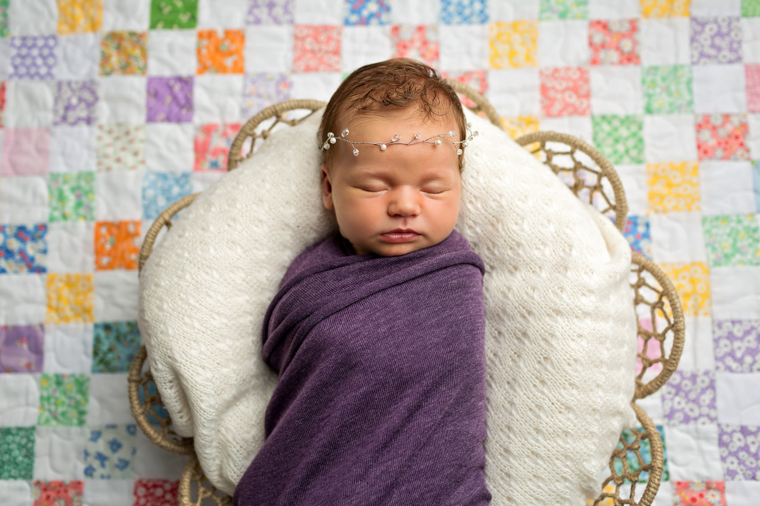 Boulder Posed Newborn Photographer