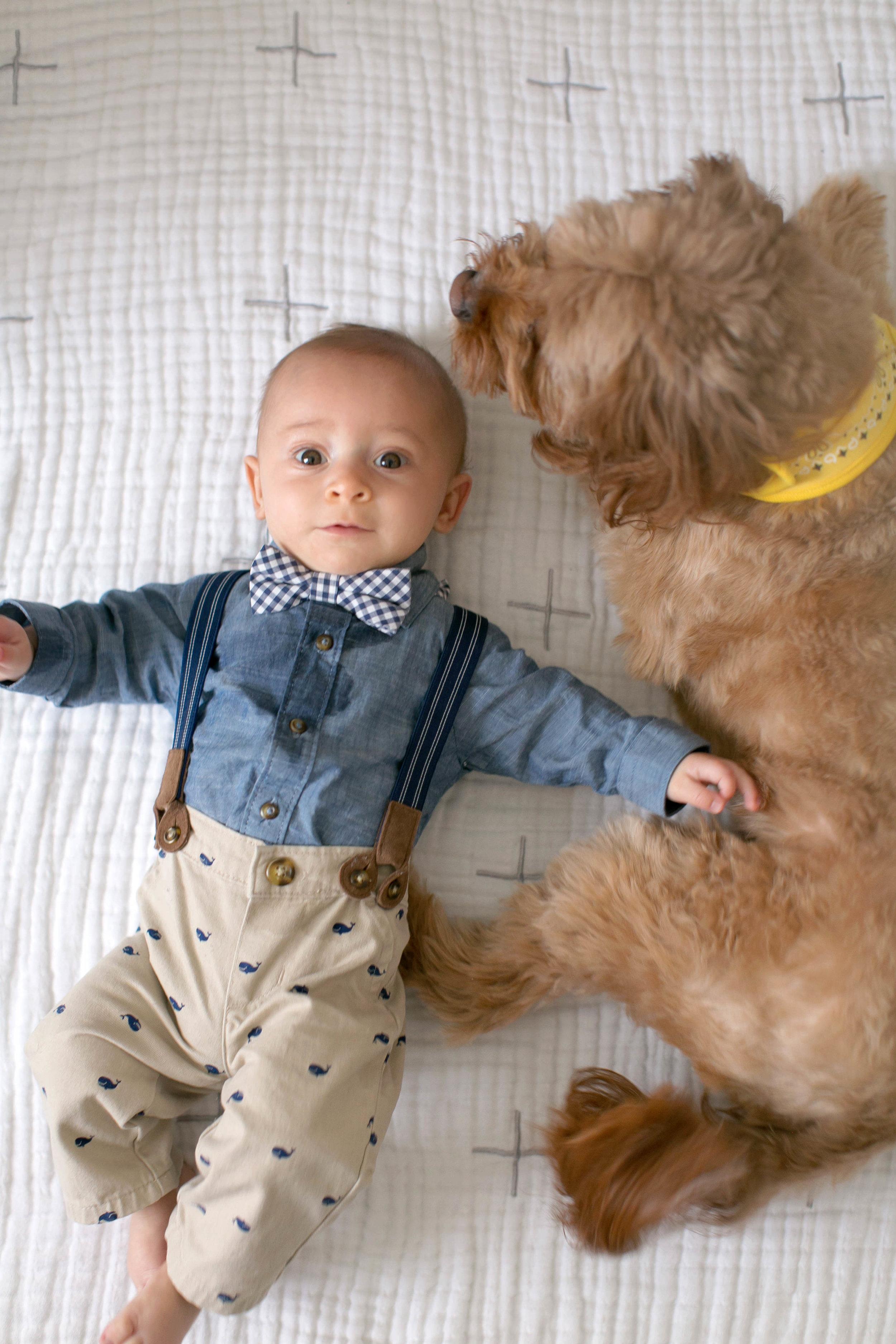 Denver Newborn Photograher Boulder Newborn Photographer Denver Maternity Photographer Boulder Maternity Photographer Denver Milestone Photographer Denver Child Photographer Denver Family Photographer