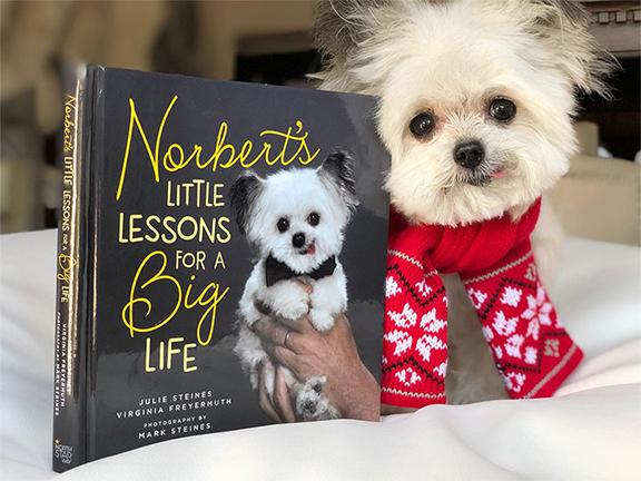Norbert Little Lessons.jpg