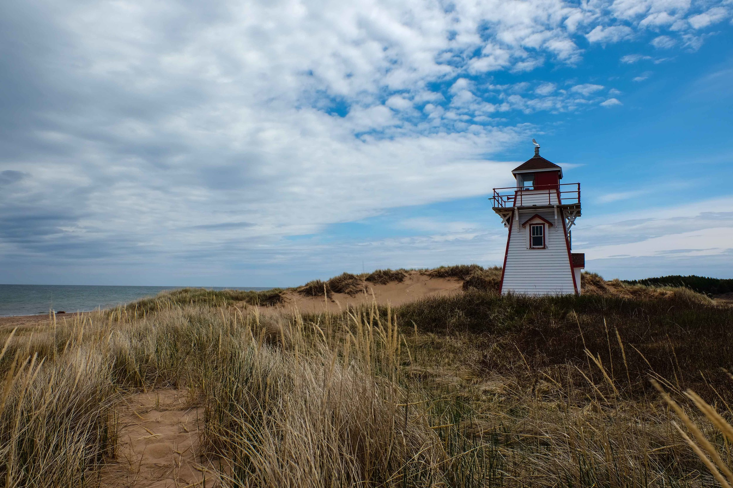 Blue skies, reddish dunes and ocean.  #PerfectlyPEI
