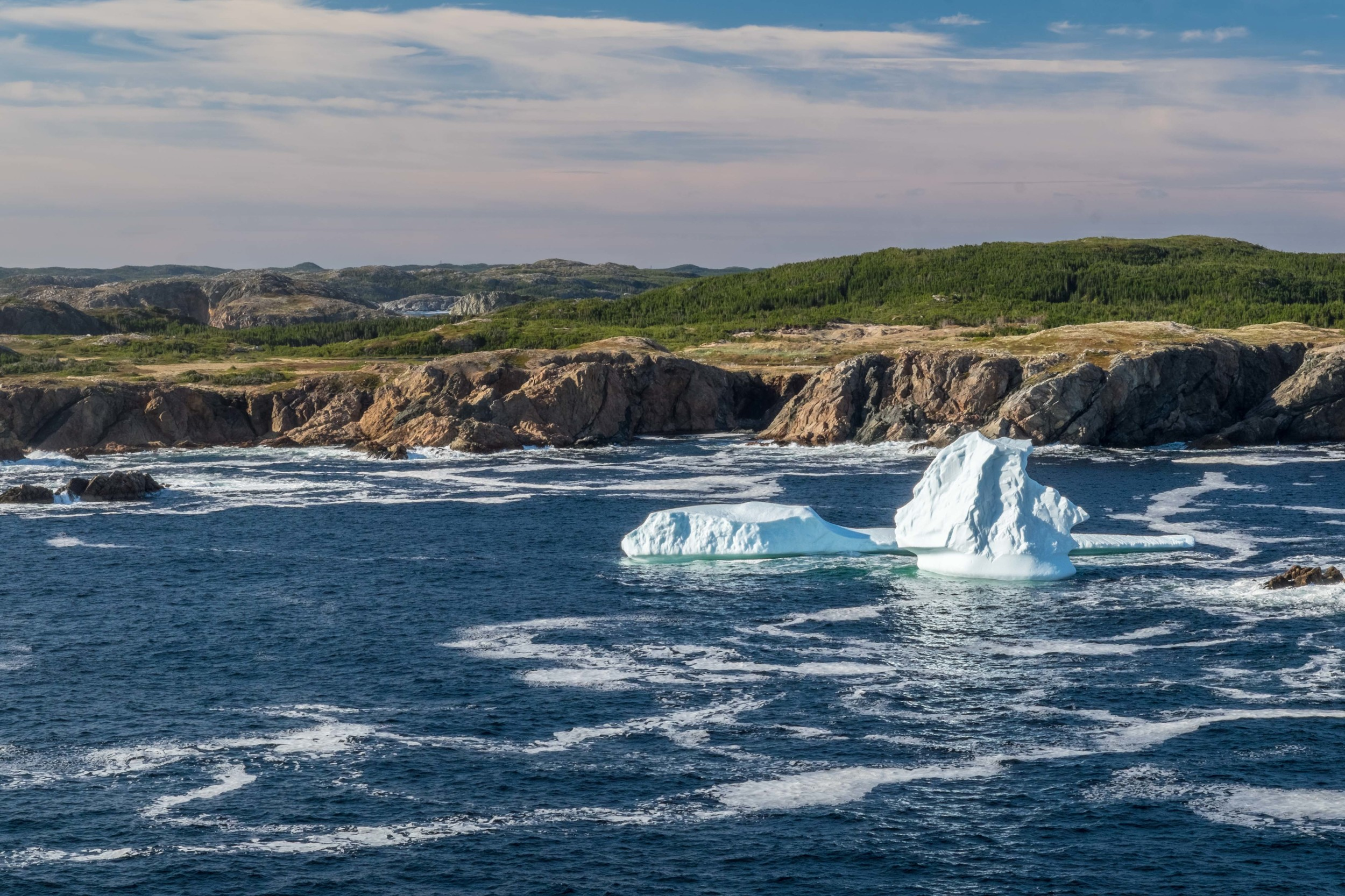 Icebergs settle into a bay near Twillingate, Newfoundland.
