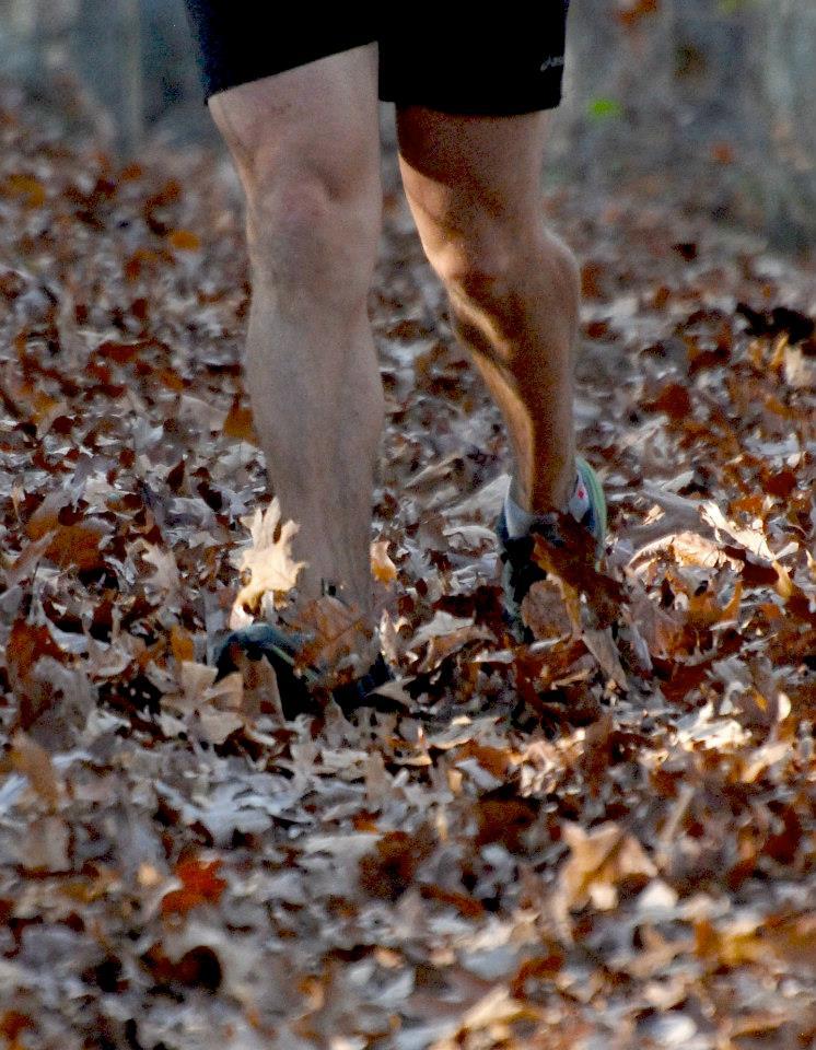 stinking-leaves