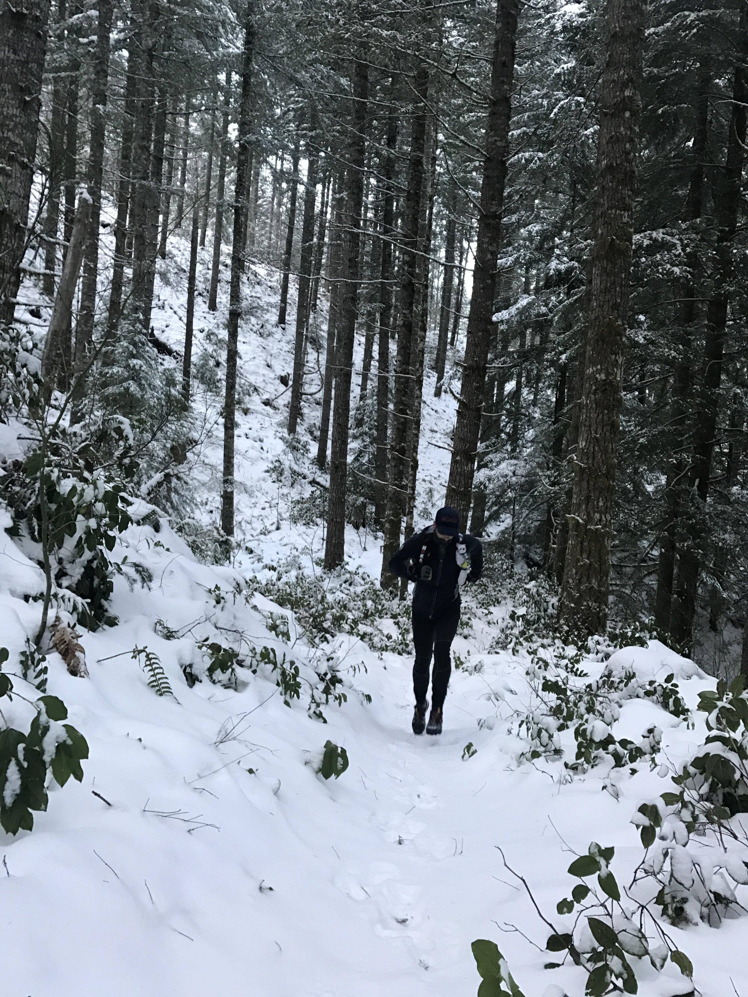 Jordan Carey pushing through the powder - Tillamook Forest, Timber, OR
