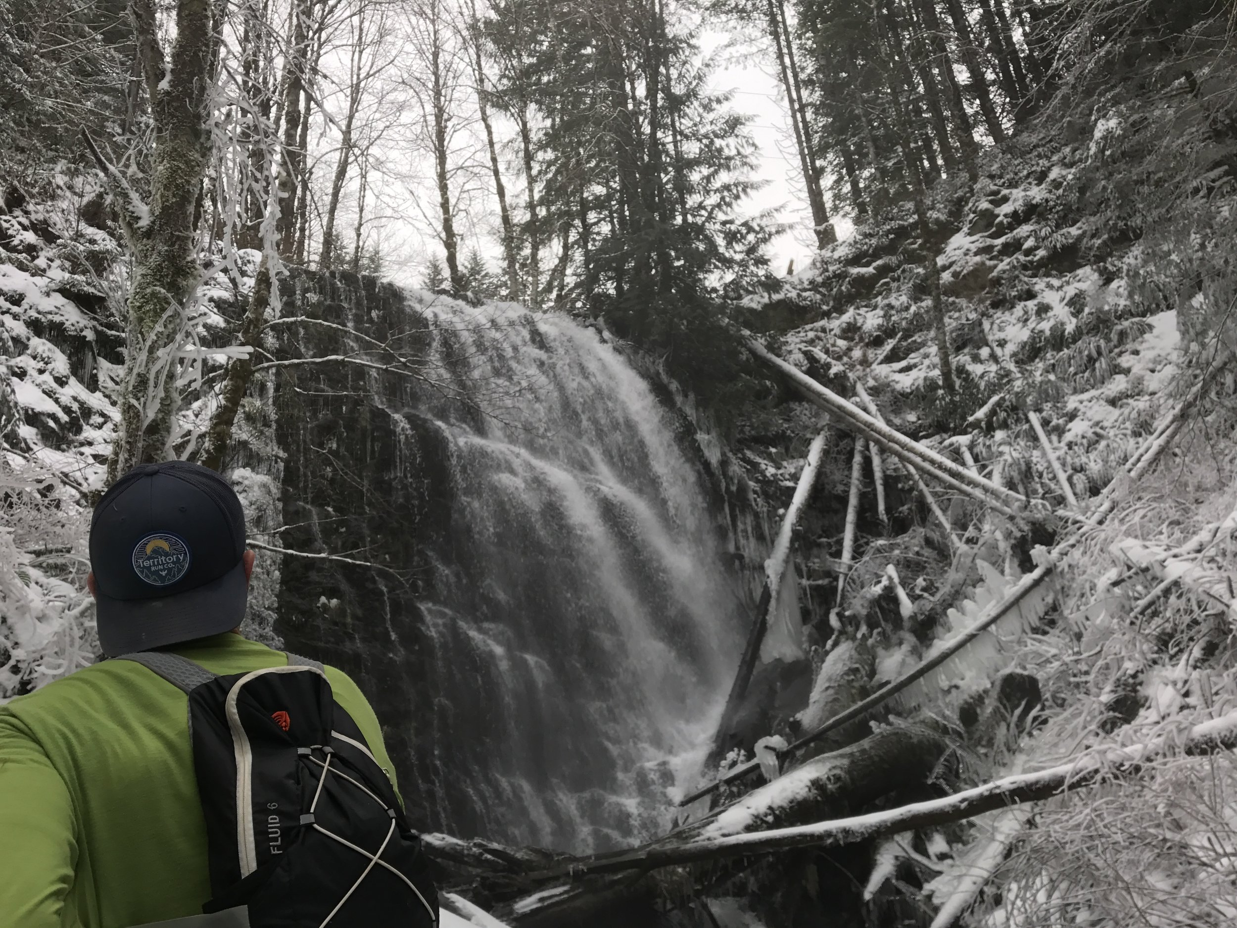 Brian taking in the view at University Falls - Tillamook Forest, Timber, OR