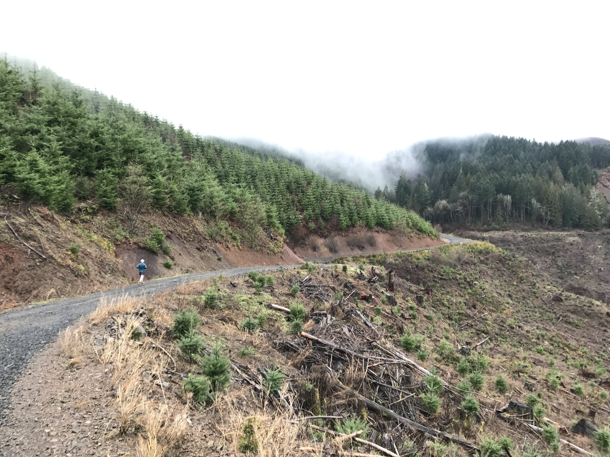 Jeremy Long cruising the forest roads near the Tillamook Forest - Forest Grove, OR