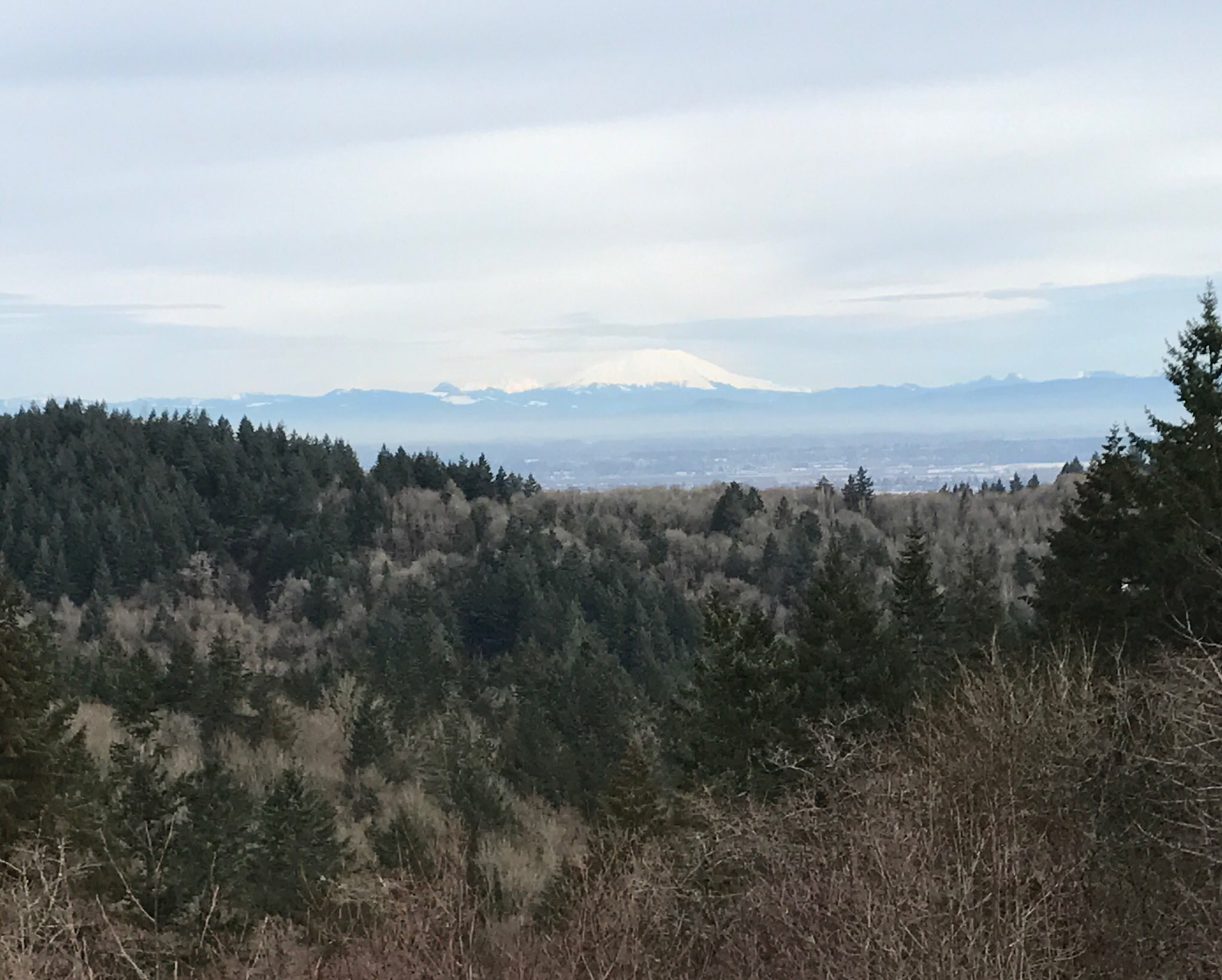 Road run with a view. Mt. St. Helens covered in snow - Skyline Ave, NW Portland