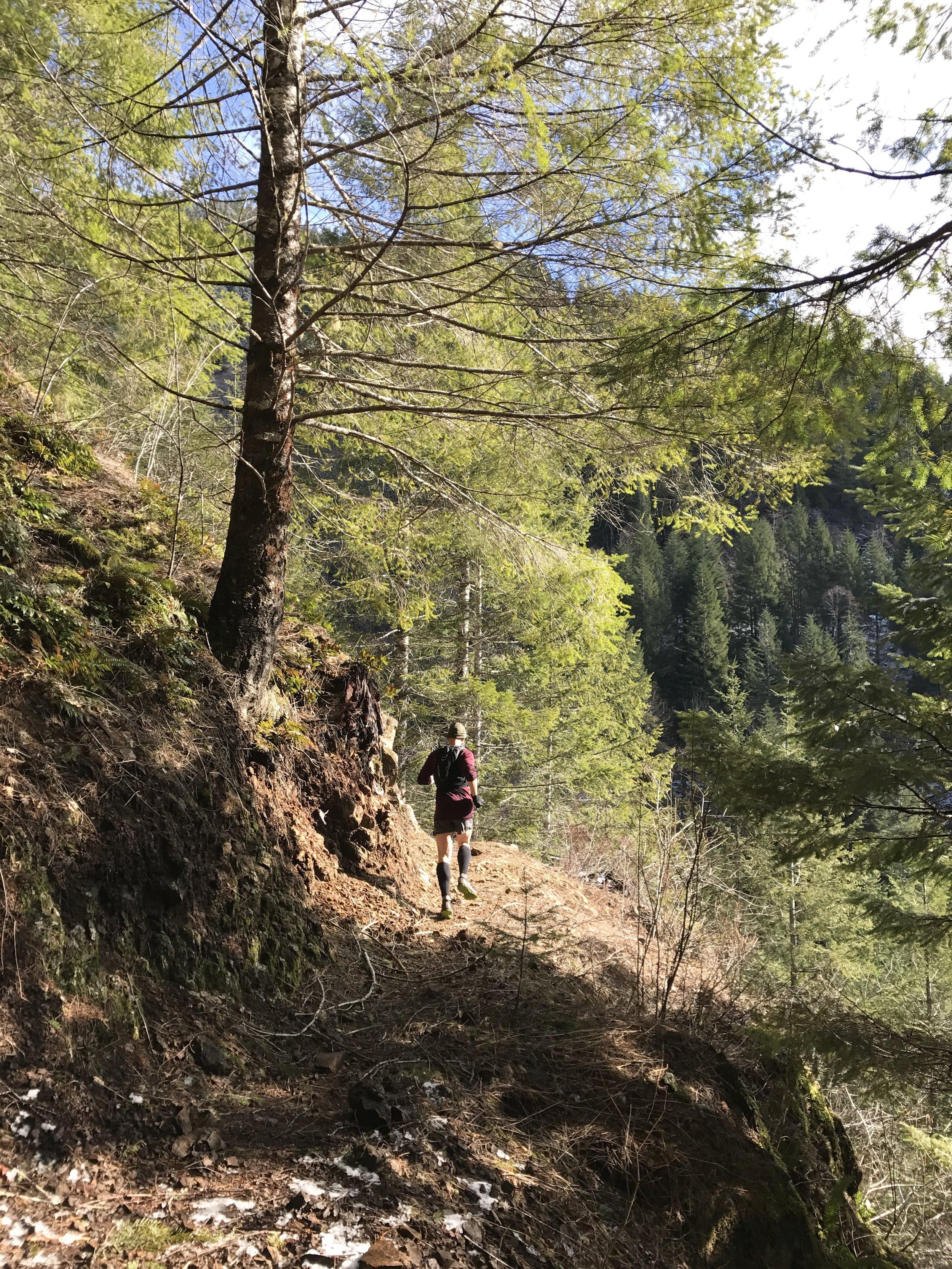 Rounding the corner - Wilson River Trail - Tillamook