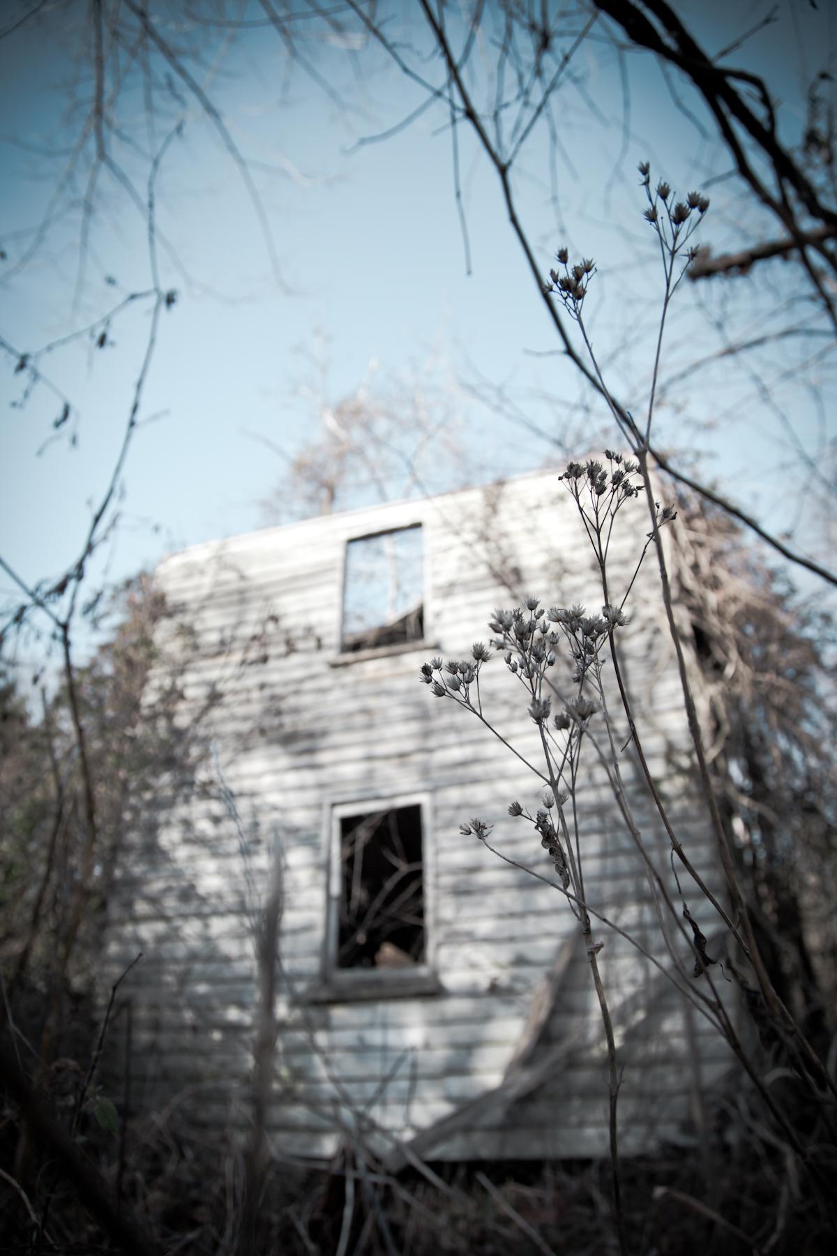 HiddenHouse-15.jpg
