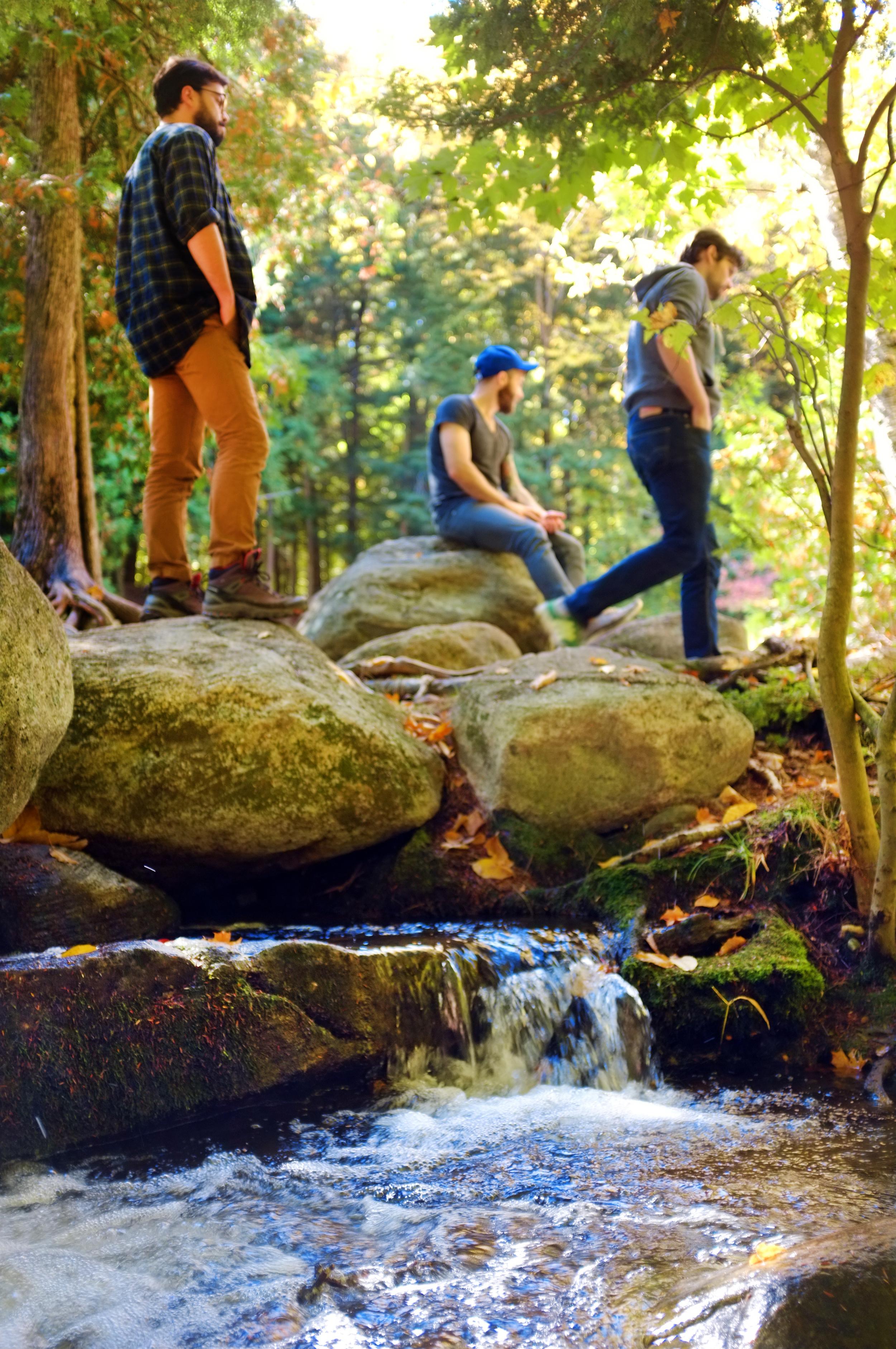 the_woods_of_minden_hills_minden_wild_water_preserve