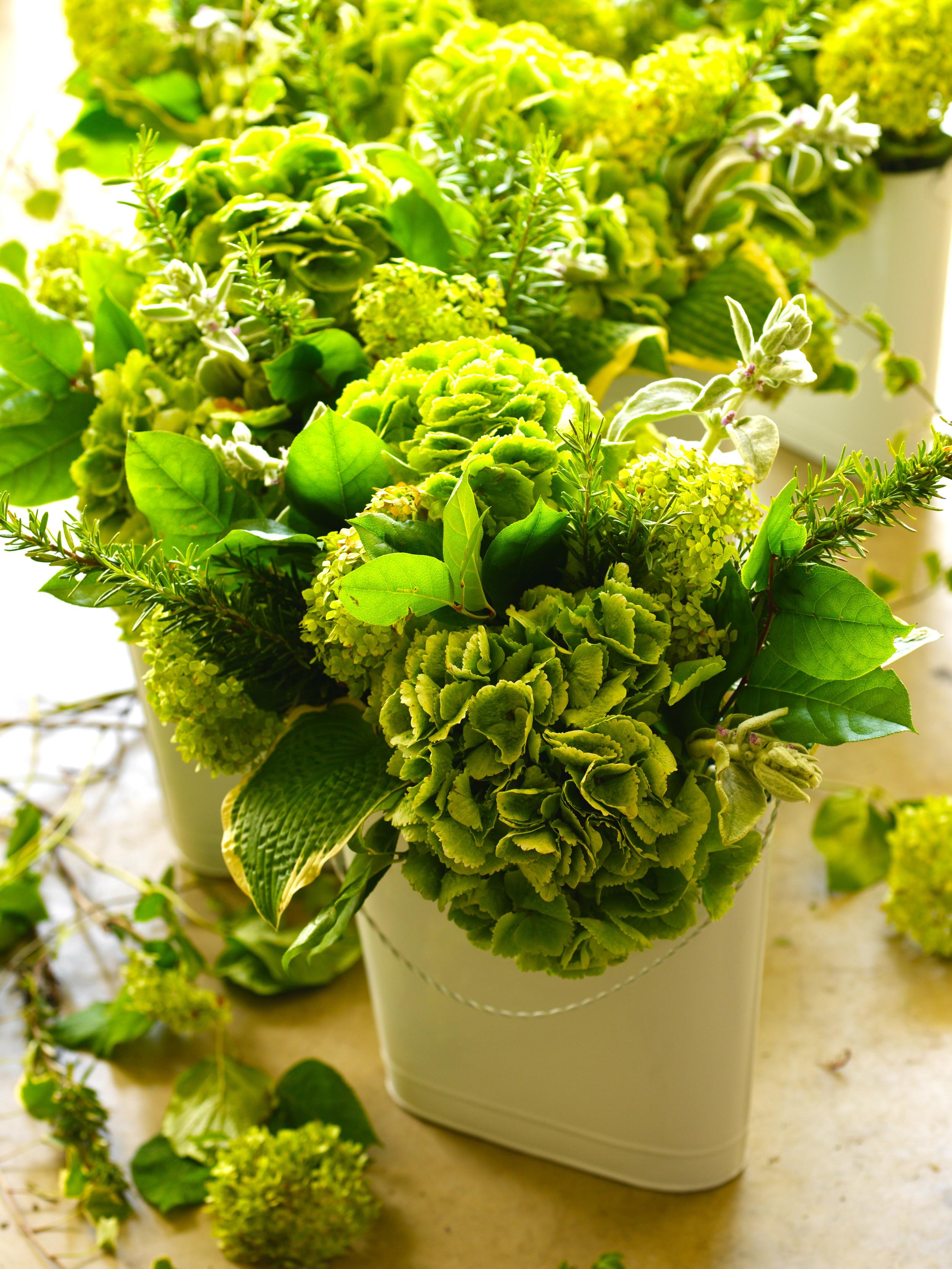 GardenShop_0016_2_2.jpg