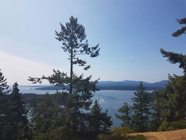 Hiking the bluffs on Galiano Island this weekend!