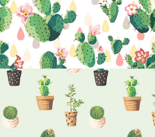 ojay_juarez_plants.jpg
