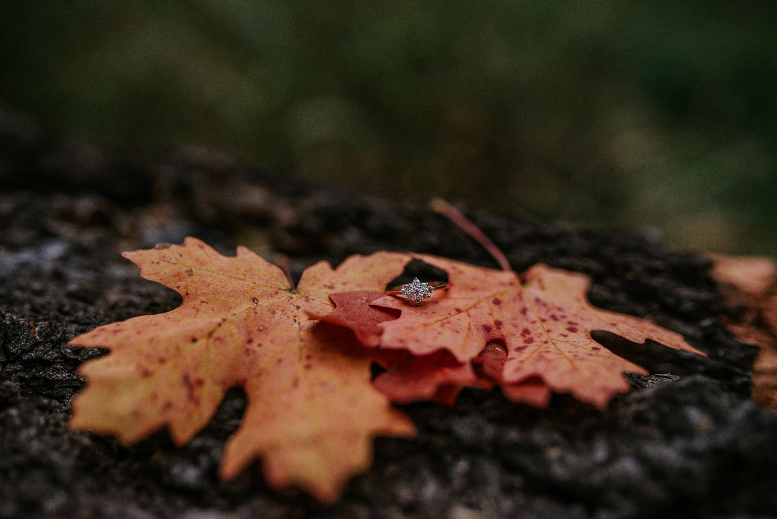 Fall Stormy Engagement Session Mount Lemmon-24.jpg
