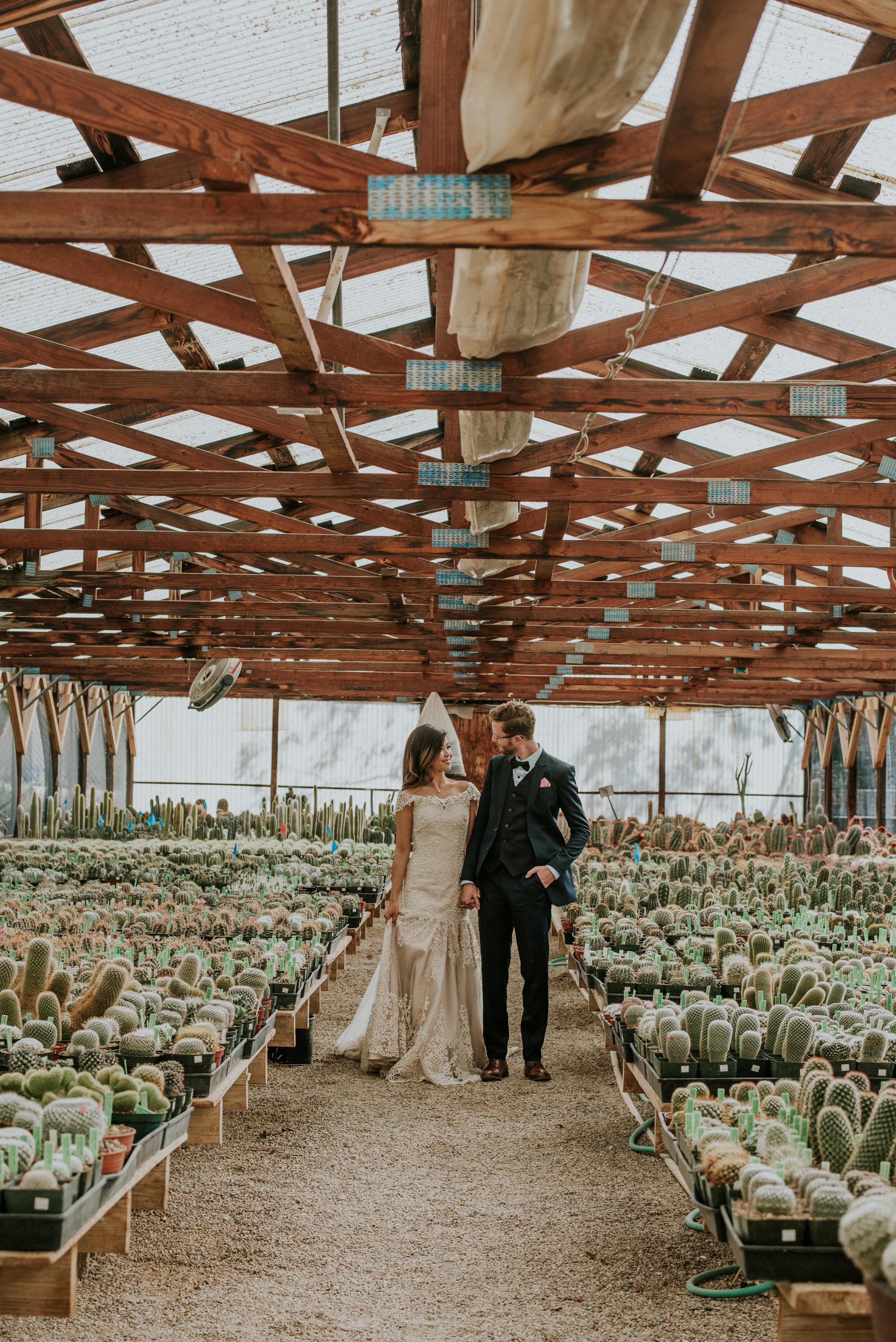 Tucson DIY Greenhouose Backyard Wedding-25.jpg