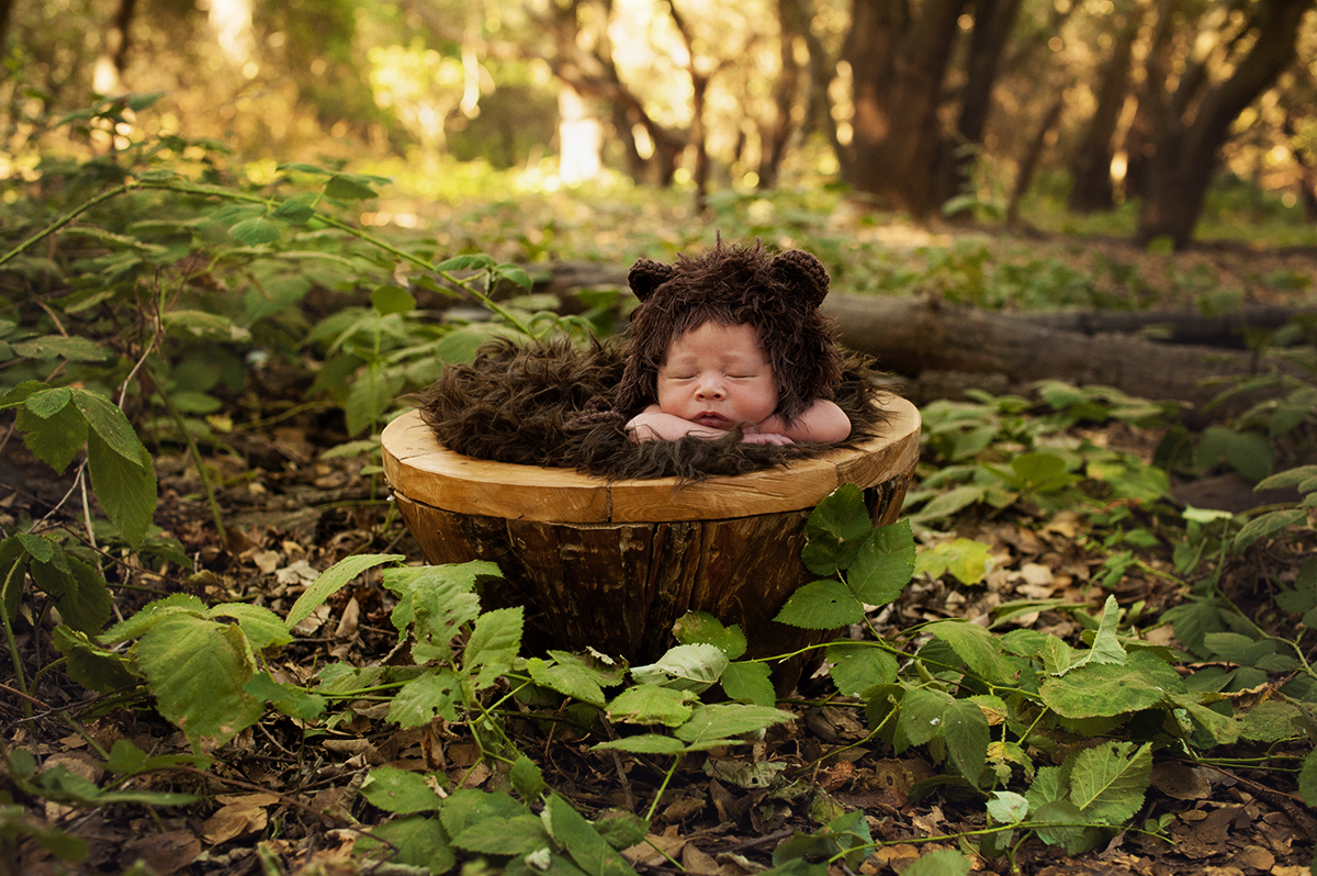 newborn photographer lodi