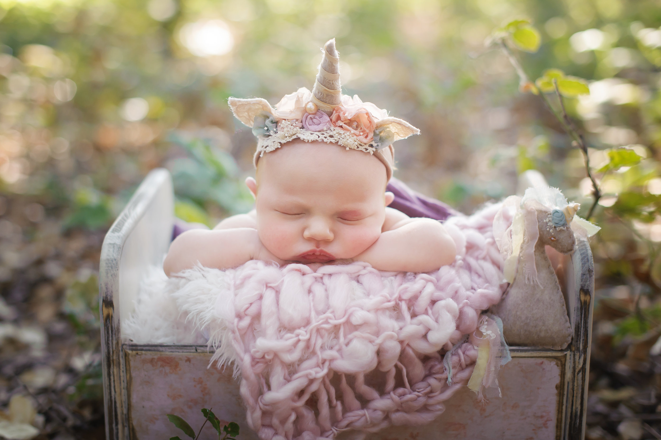 lodi newborn photography