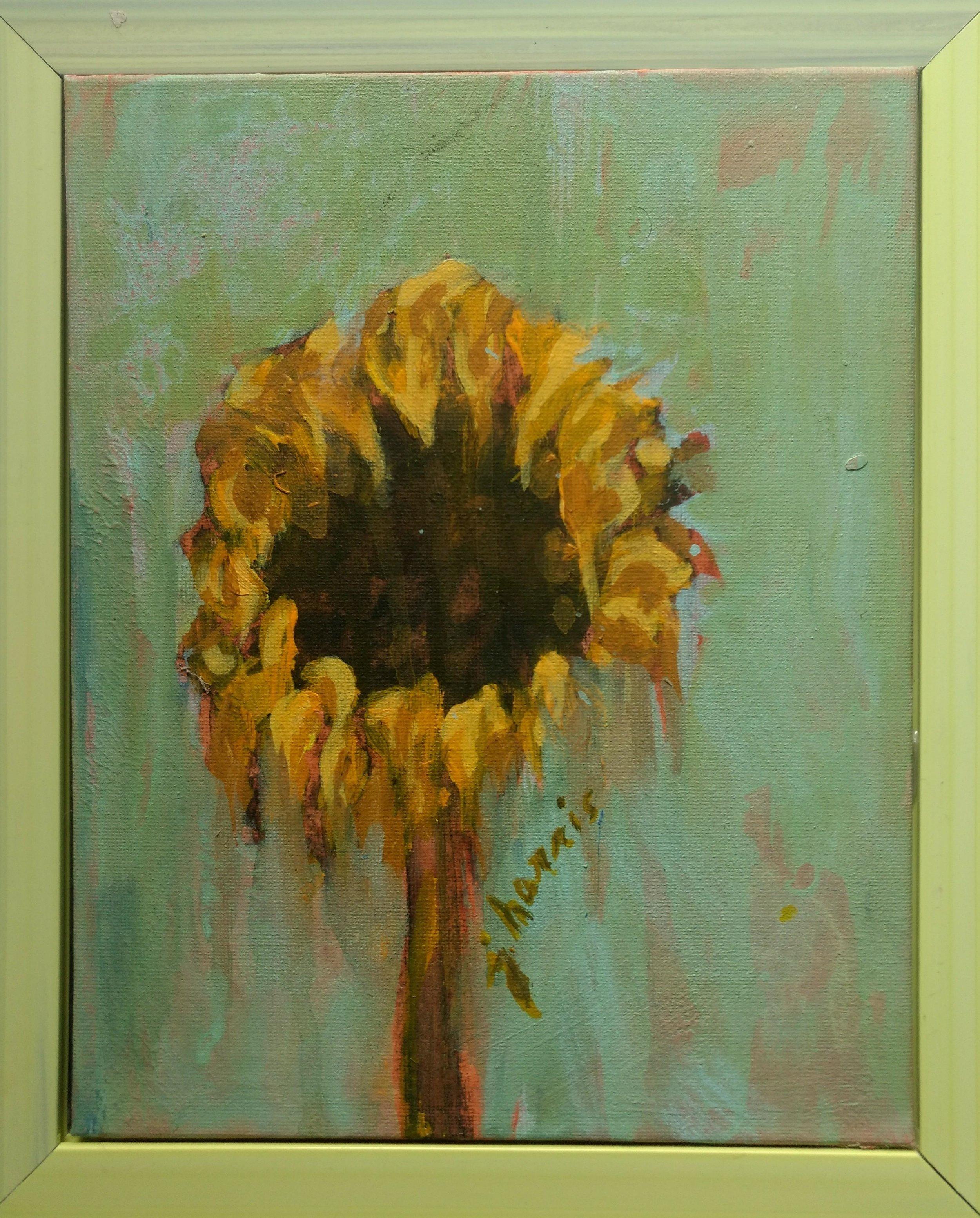 Sunflower Portrait 7