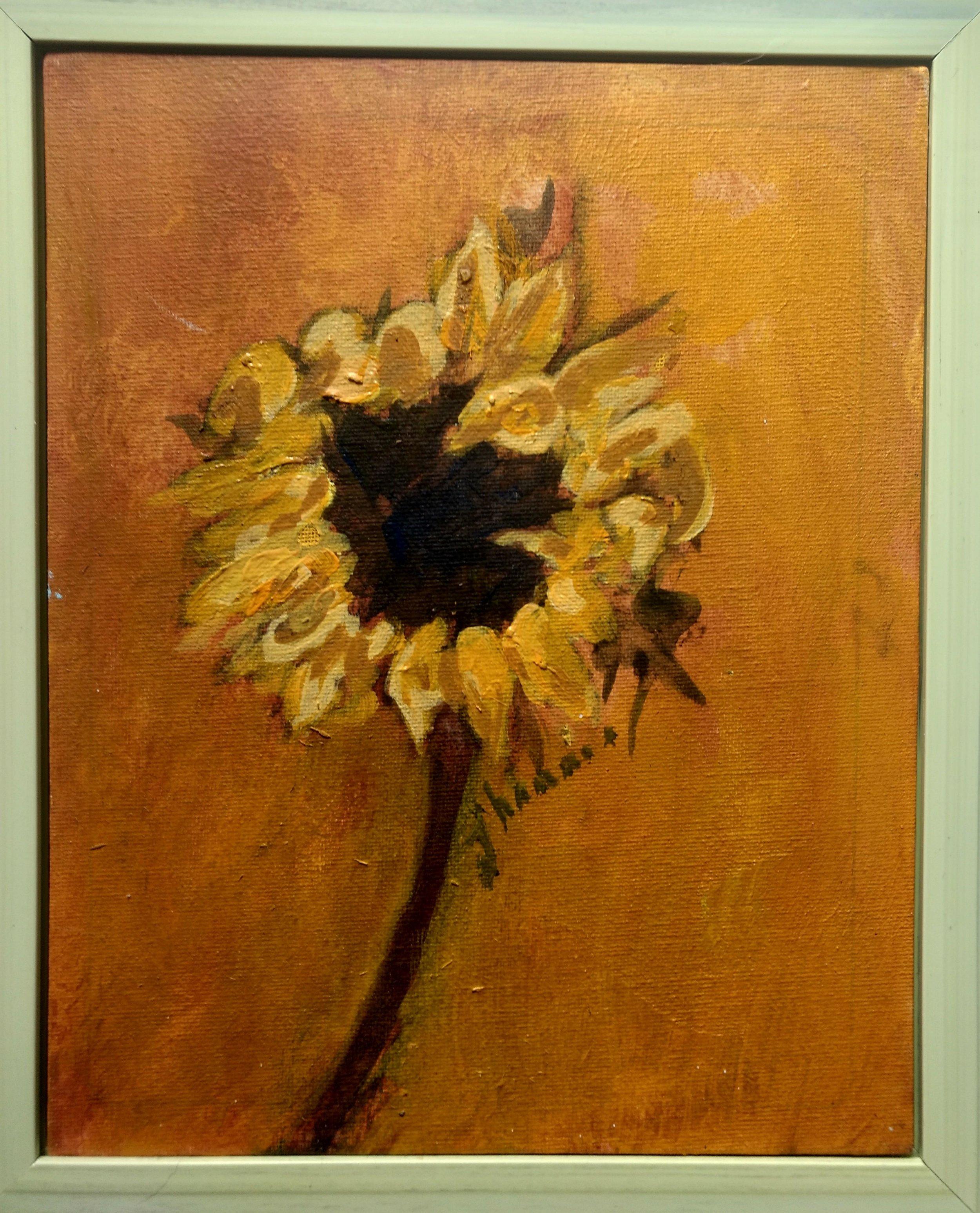 Sunflower Portrait 13