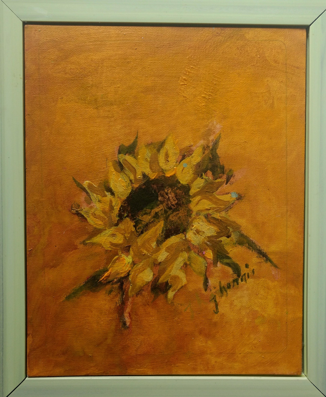 Sunflower Portrait 10