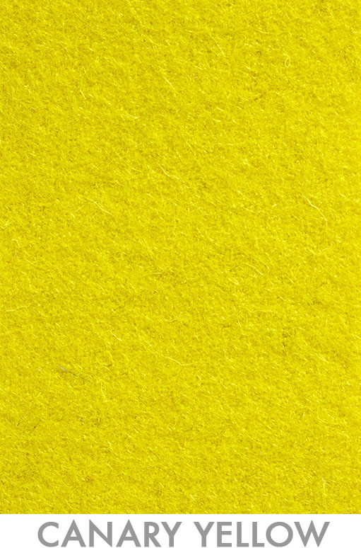 19_Canary Yellow - Pantone 3495.jpg
