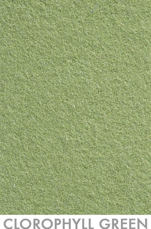 23_Clorophyl Green - Pantone 7496c Version 1.jpg