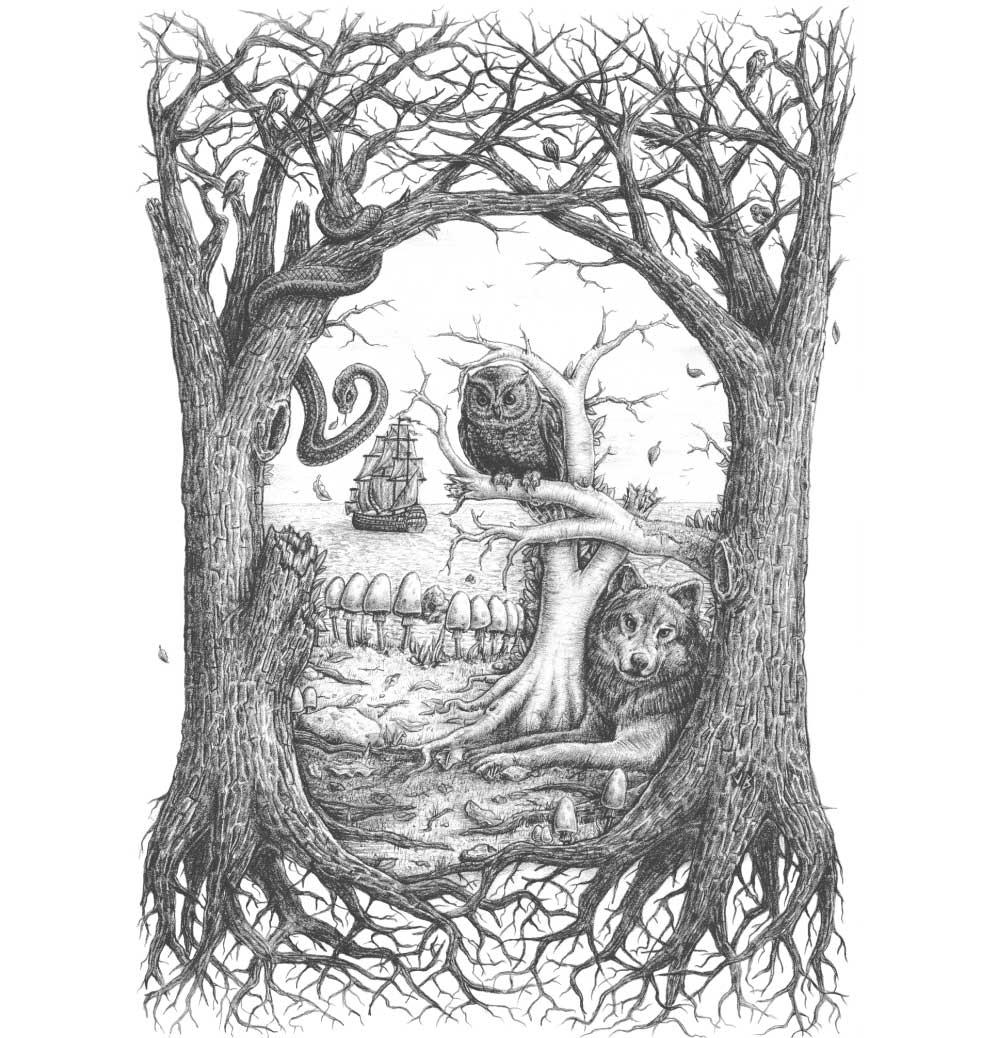 jb-Skullusion-graphic.jpg