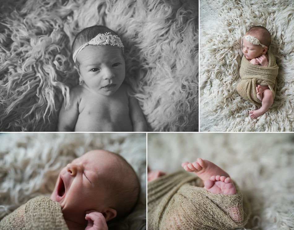 lakewood-newborn-photographer