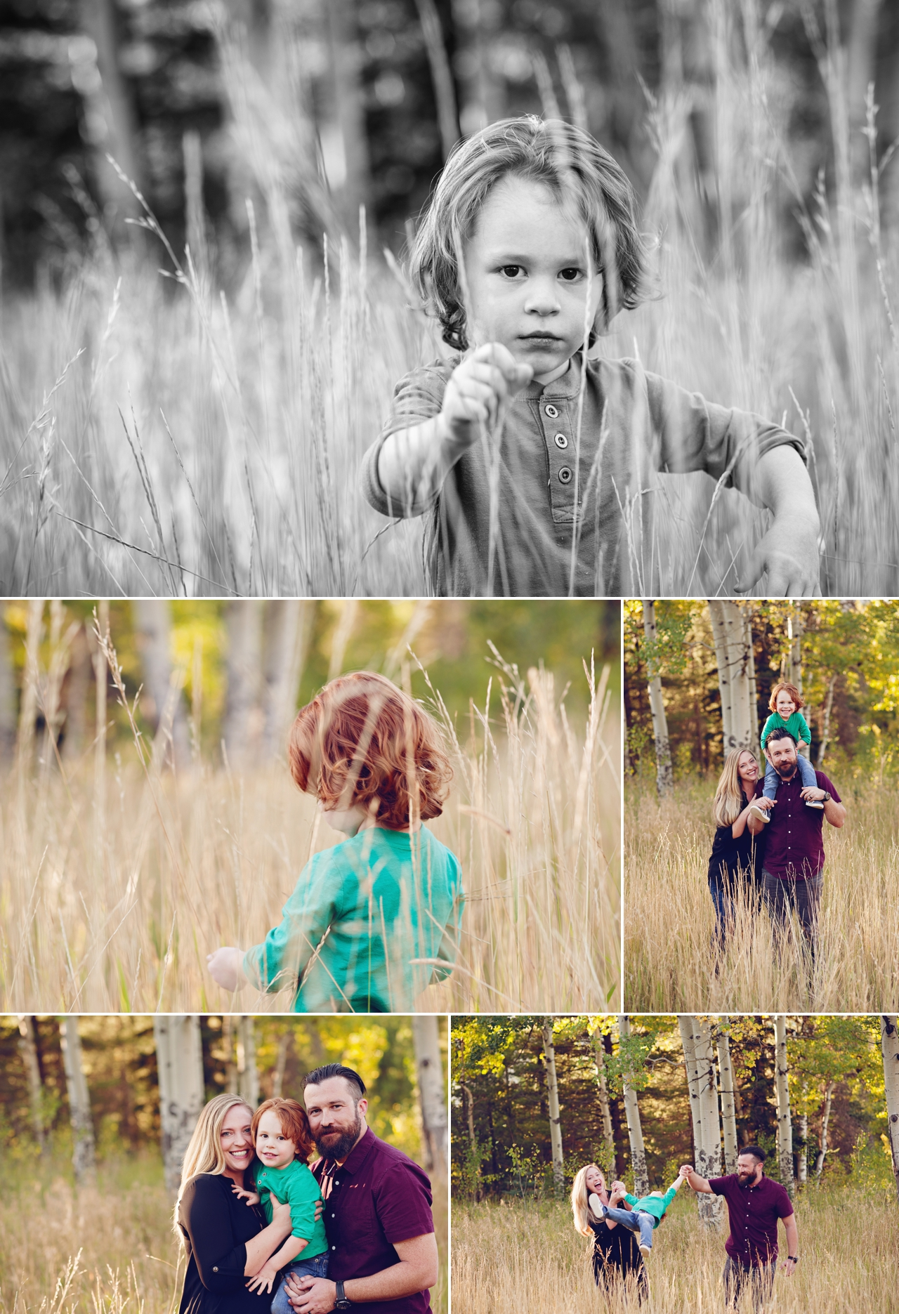 P Family  Evergreen Family Photographer 3.jpg