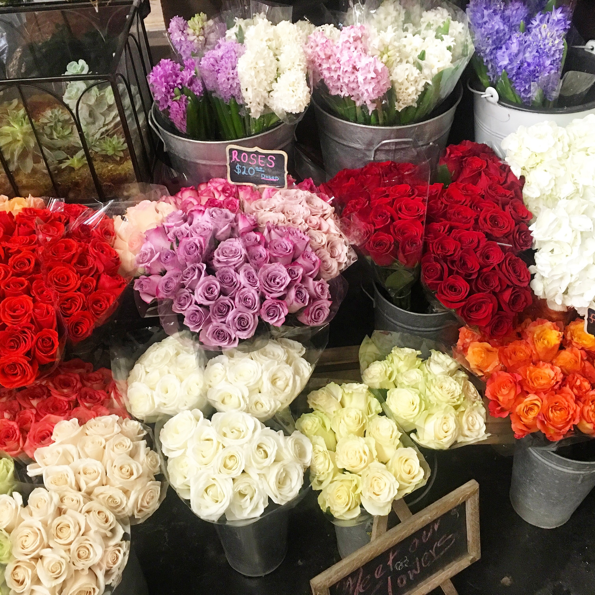 Flowers by FRASSAÏ