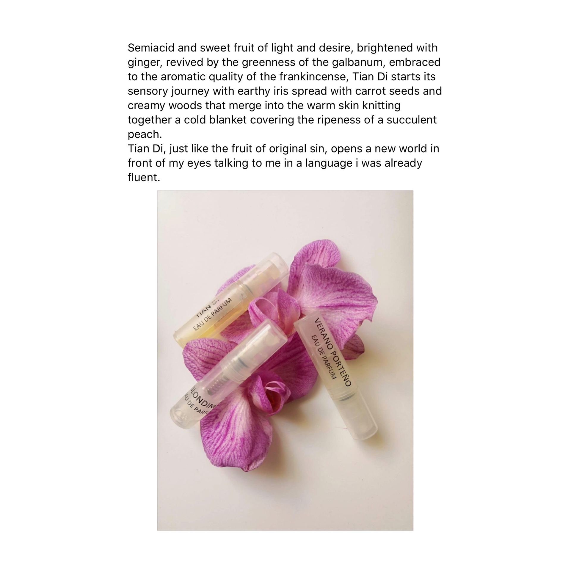 Fragrance Review Anayelperfume Tian Di by FRASSAI