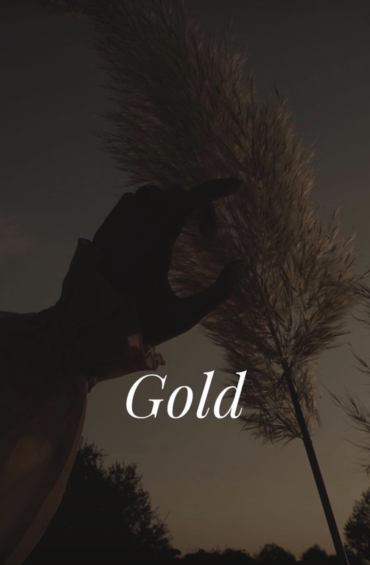 Gold Hour Perfume