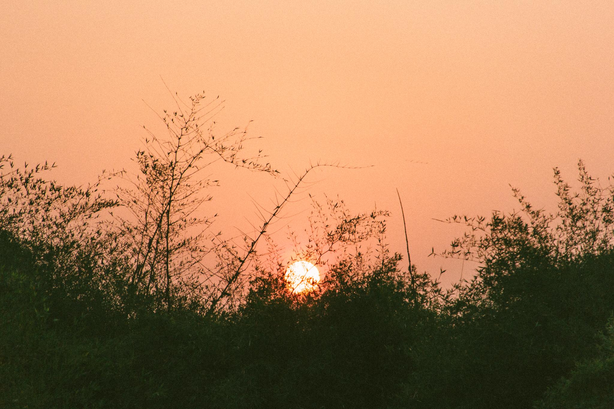 A&Y Videography - Uttarayan 2014-217.jpg
