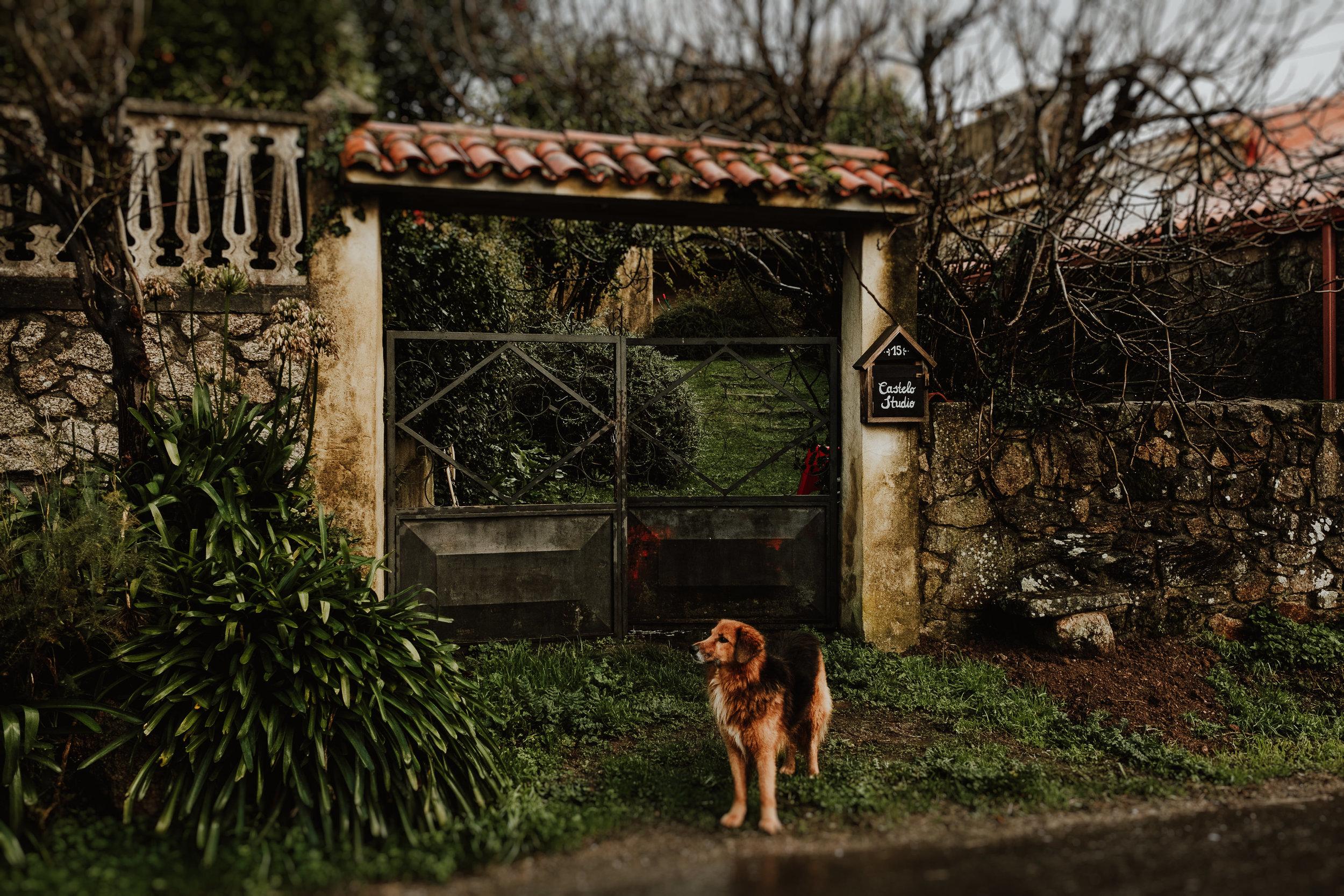 Madriguera-Workshop-Castelo-Studio-1.jpg