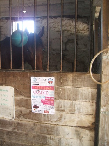 Poster at Pride horseback riding stables to promote the event
