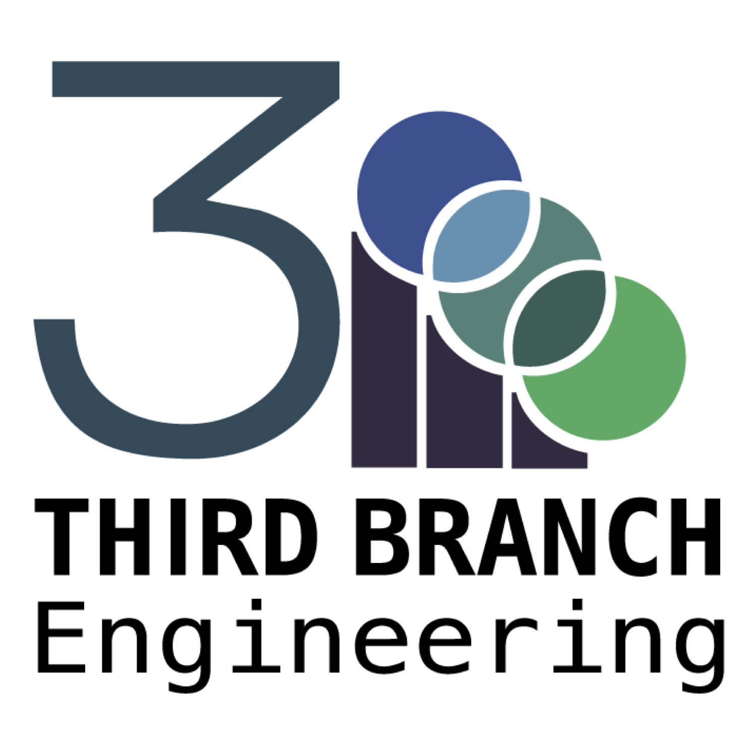 Third Branch Engineering   Third Branch Engineering embraces the triple bottom line of People, Planet, and Profit and provides environmental engineering services to enhance and support its clients' sustainability and corporate social responsibility goals and reporting.