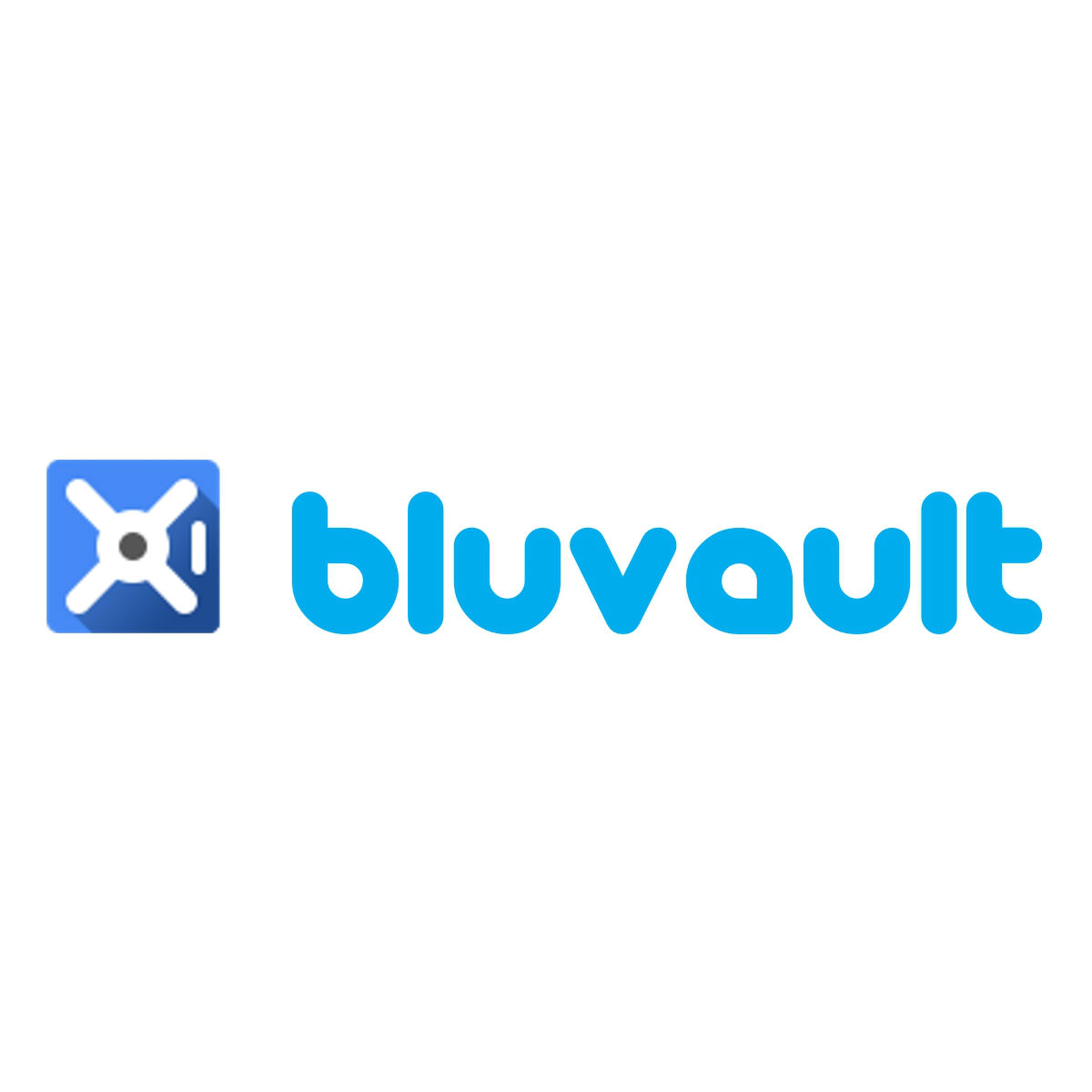 Bluvault Solutions, Inc.   Bluvault is a management consulting and technology company that specializes in transformation of business spend management processes. Our company offers solutions to support clients looking for PTP Software implementations, Systems Integrations, Accounts Payable Automation, and Supplier Enablement.