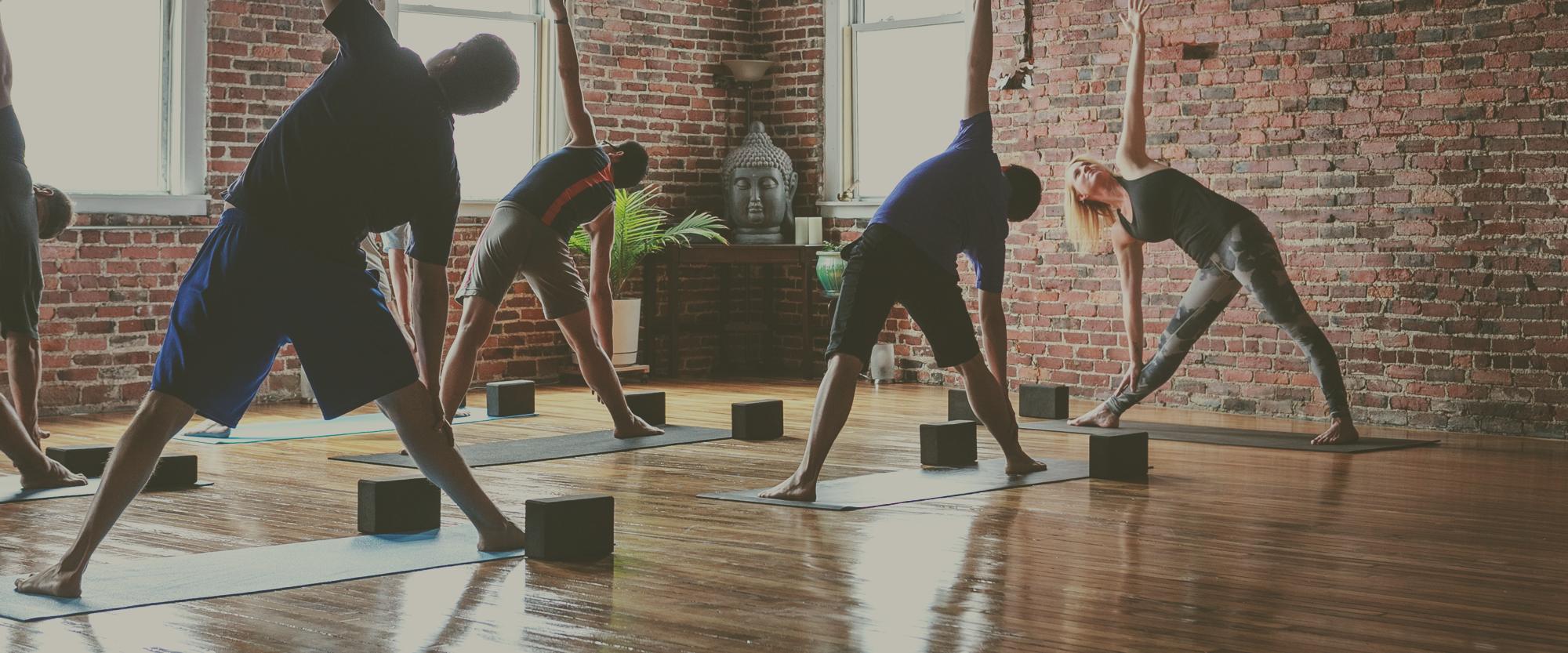 Fluid Yoga®, PranaVayu, Broga® and Divine Sleep Yoga Nidra® Certfified