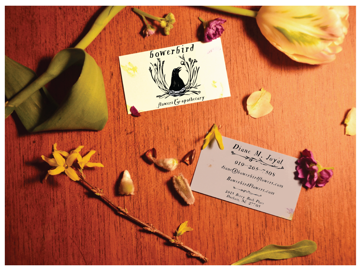 Business cards, etc for Bowerbird Flowers