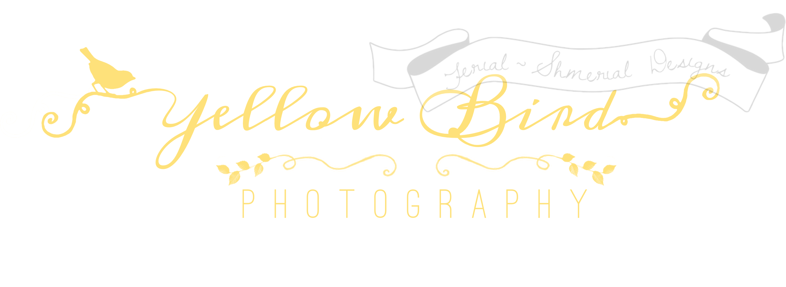 yellowbirdphotography_banner_logo.png
