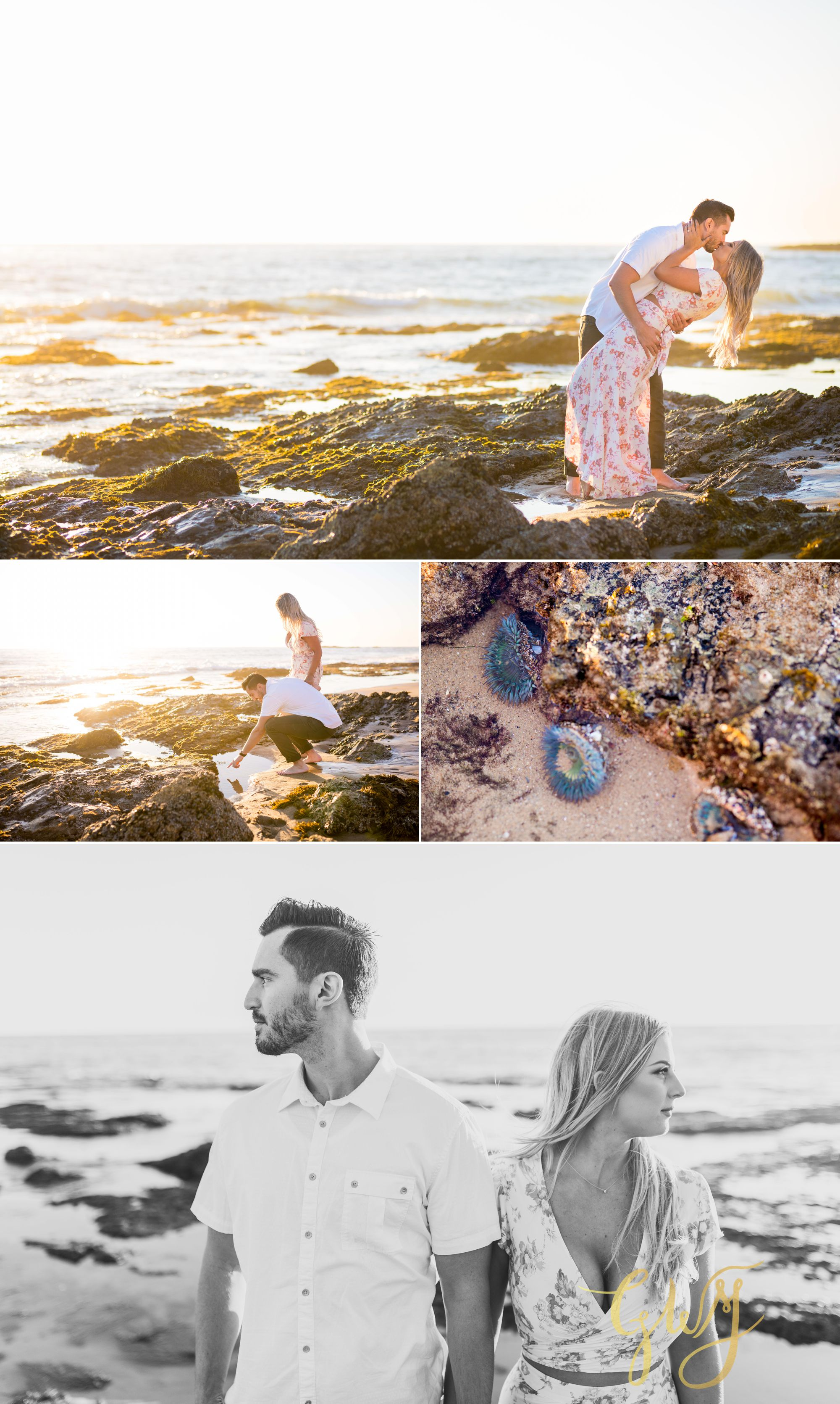 Christien + Crystal Back Bay Newport Crystal Cove Reef Point Sunset Engagement Portrait Session by Glass Woods Media 15.jpg