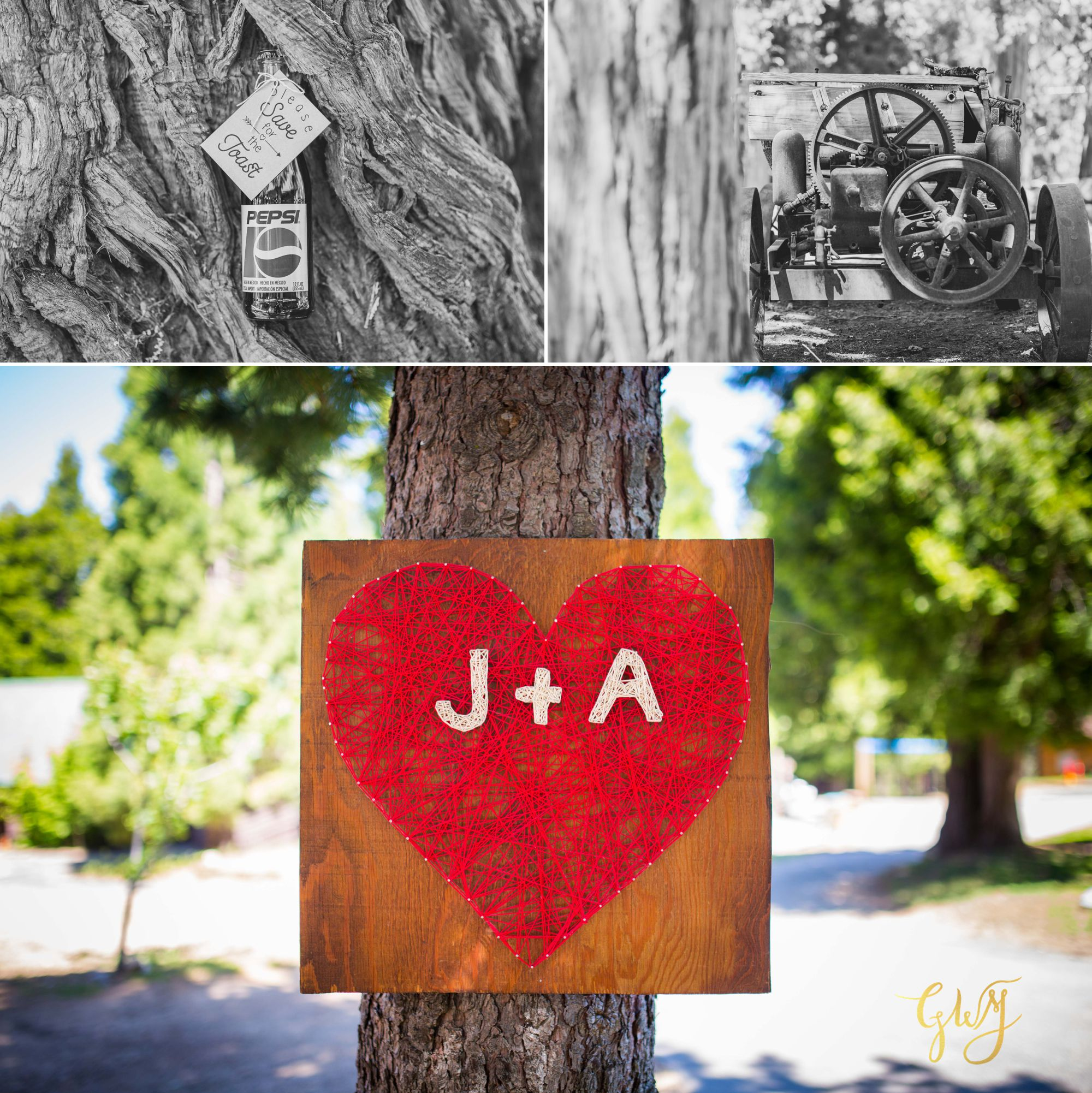 Allison + Jared Southern California Mountain Thousand Pines Christian Camp Wedding by Glass Woods Media 2.jpg