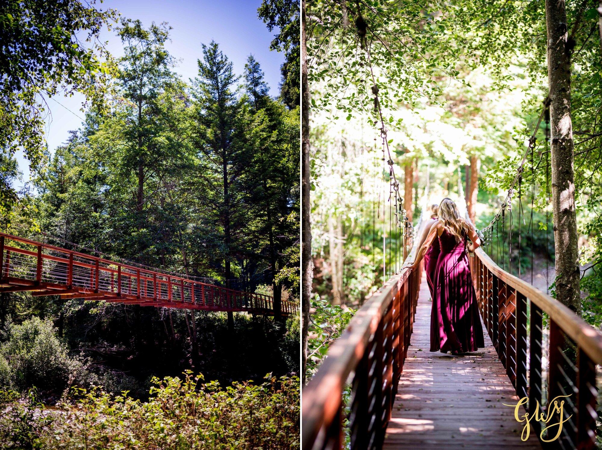 Casey + Jordan's Intimate Big Sur Elopement in the Redwoods by Glass Woods Media 21.jpg