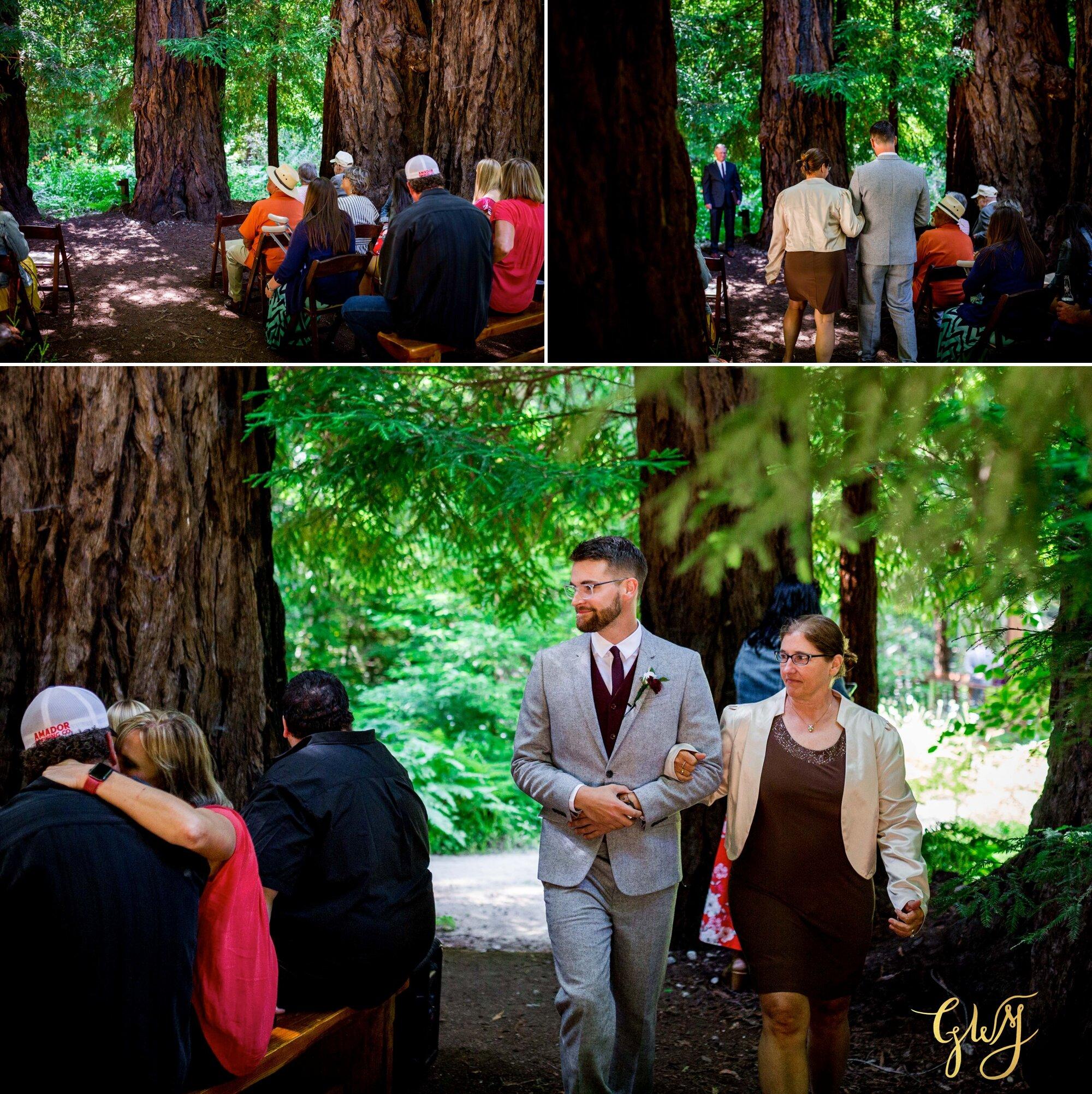 Casey + Jordan's Intimate Big Sur Elopement in the Redwoods by Glass Woods Media 31.jpg