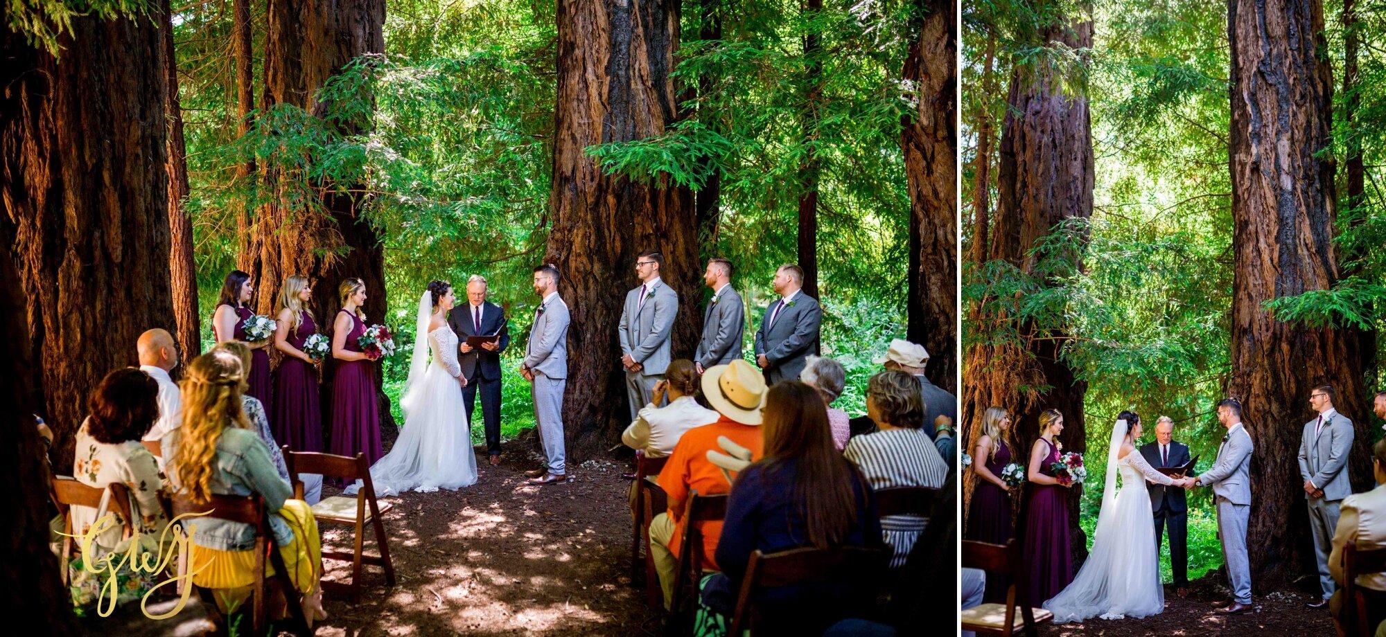 Casey + Jordan's Intimate Big Sur Elopement in the Redwoods by Glass Woods Media 33.jpg